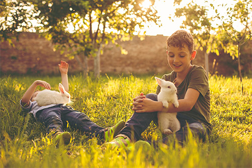 Photo of two boys with their pet rabbits. The rabbits are treated by the Exotic and Bird Clinic of New England, which provides specialized veterinary services required by small exotic pet mammals such as rabbits, ferrets, guinea pigs, chinchillas, hedgehogs, hamsters, sugar gliders, rats, gerbils and more.