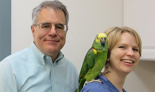 Photo of Dr. Michael Dutton and staff at the Exotic and Bird Clinic of New England. Dr. Dutton is one of a handful of triple-board certified specialists in the world with an Avian Specialty, an Exotic Companion Mammal Specialty, and a Canine and Feline Specialty.